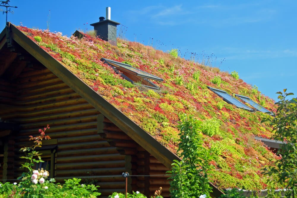 There are two main types of green roof.