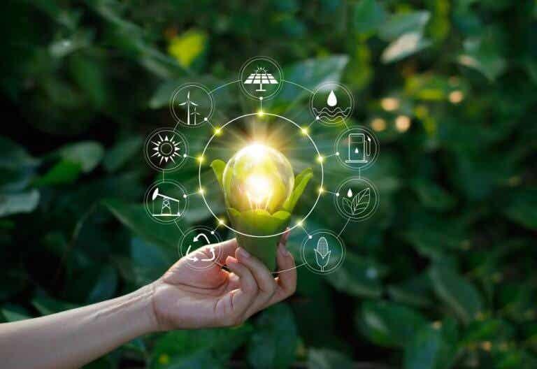 6 consejos para cambiar a energía renovable en casa