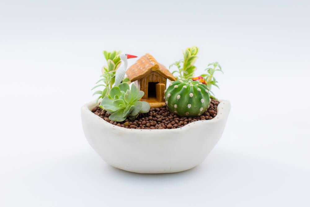 Decoración de un jardín en miniatura.
