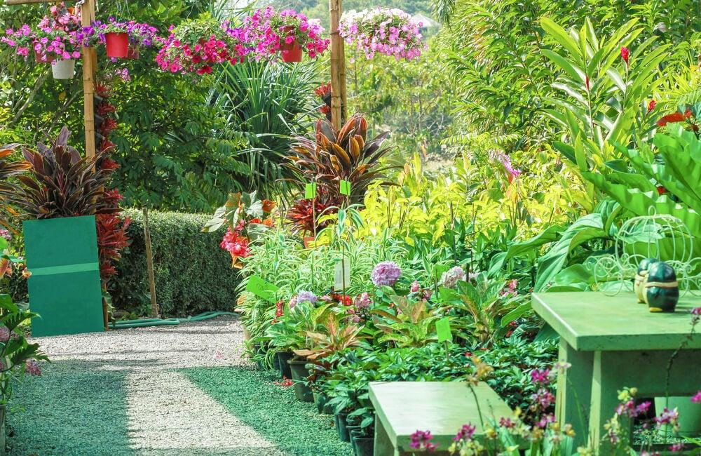 Reglas para diseñar un jardín.