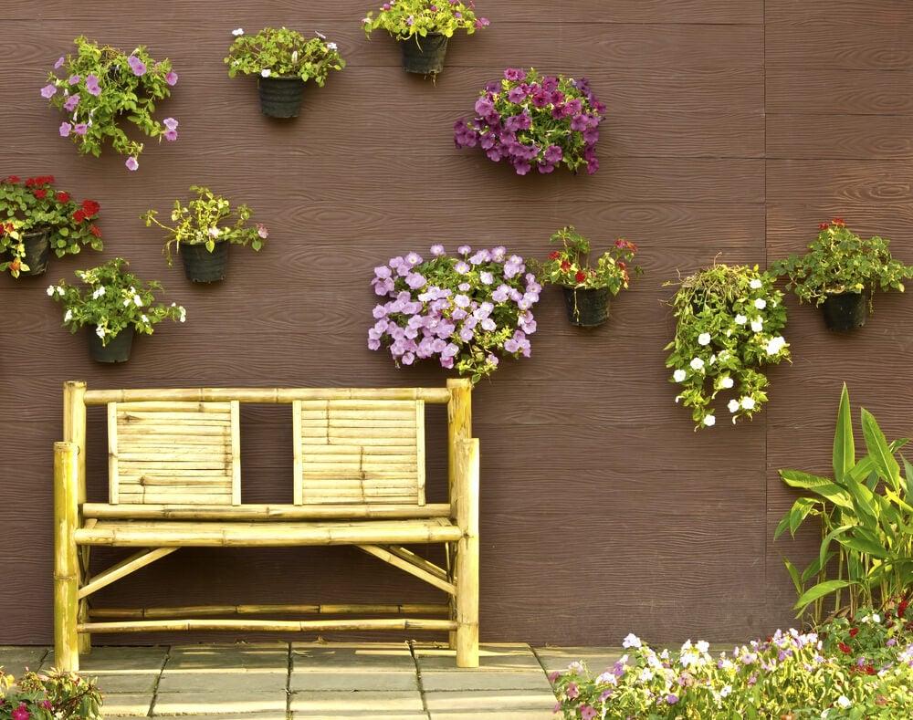 Selección de plantas del jardín.