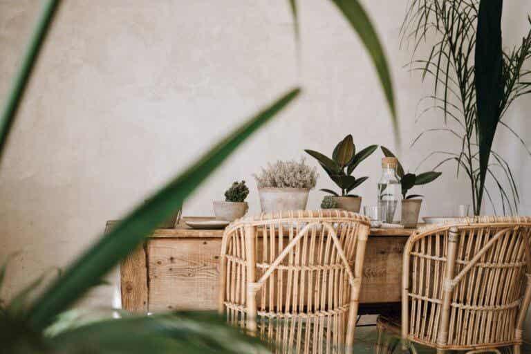 El bambú dentro del diseño de interiores
