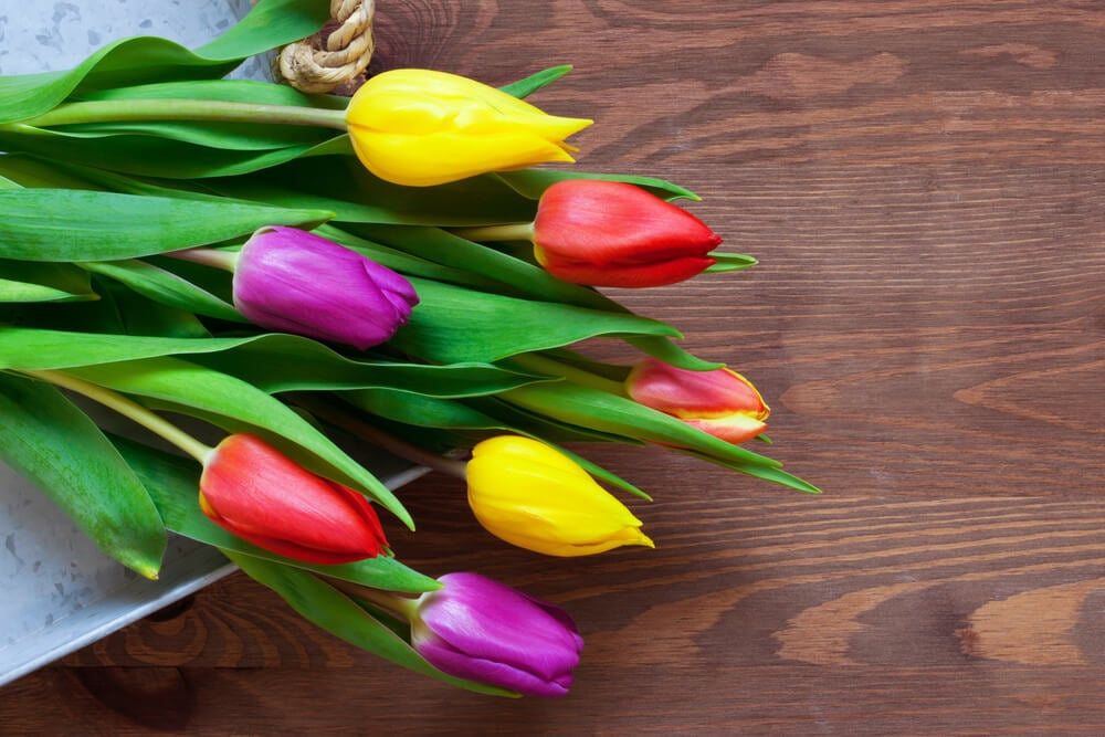 Ramo de tulipanes.