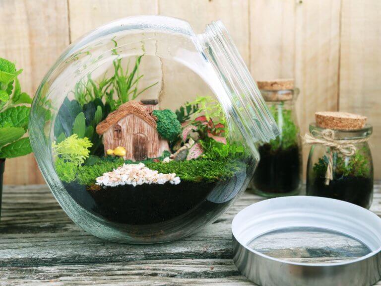 ¿Cómo realizar un jardín eterno?
