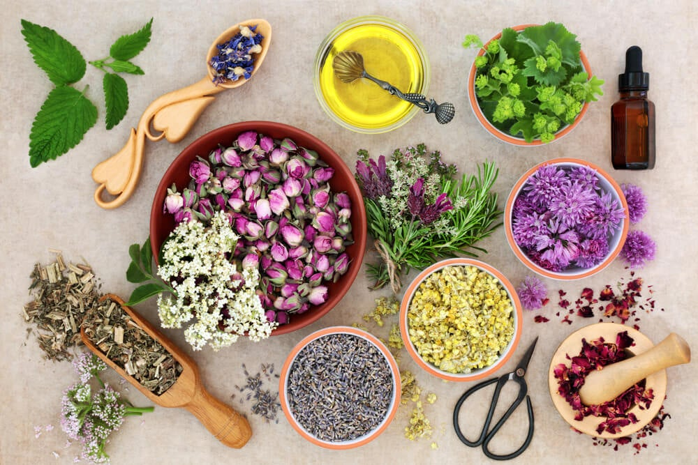 Múltiples fragancias: un oasis de aromas en tu jardín