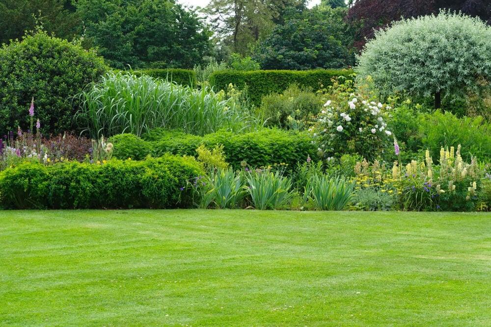 Altura de las plantas de un jardín.