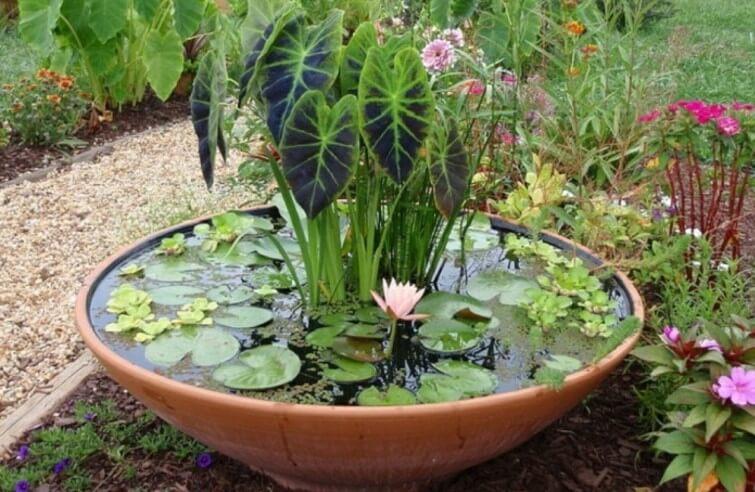 Tina para jardín.