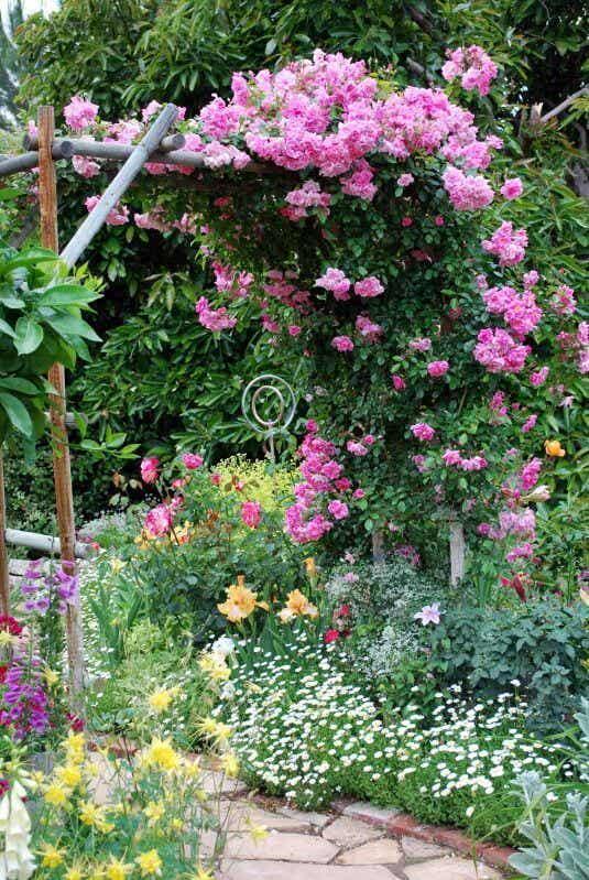 Tutores y espalderas: cómo aprender a guiar tus plantas