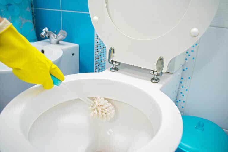La guía definitiva para limpiar bien tu baño