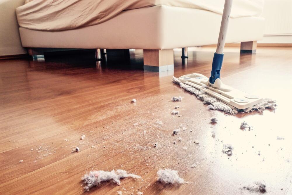 Polvo debajo de las camas