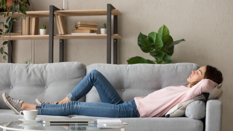 Guía práctica para elegir el sofá perfecto