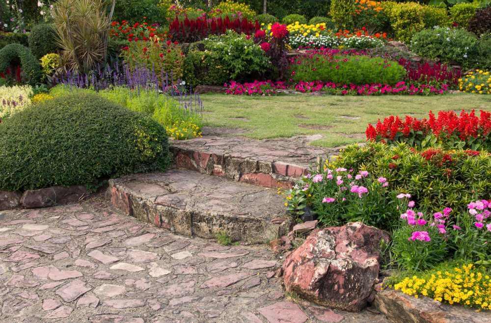 Jardín de verano: un estallido de color