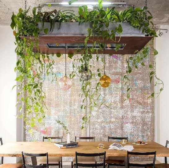 Ideas para decorar con plantas colgantes
