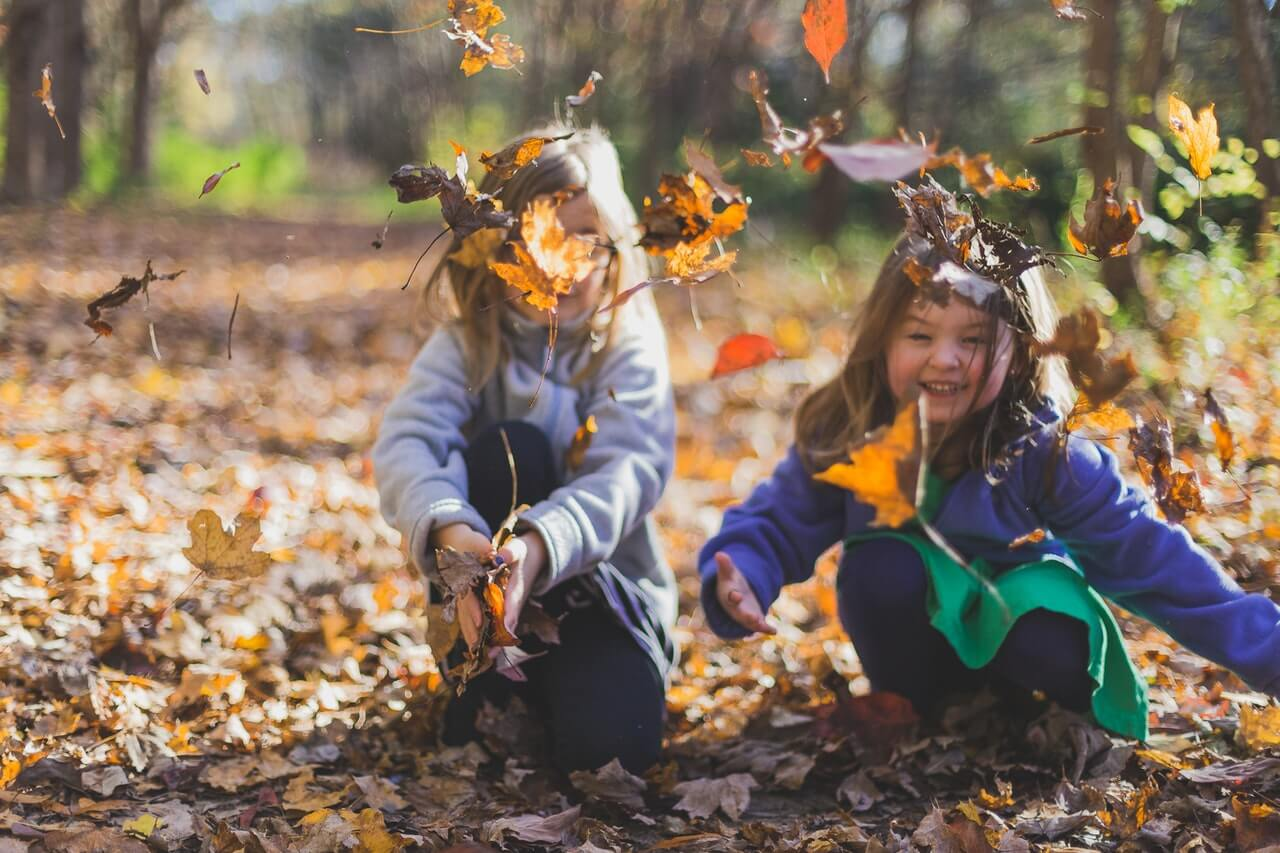 Cuidar el jardín en otoño