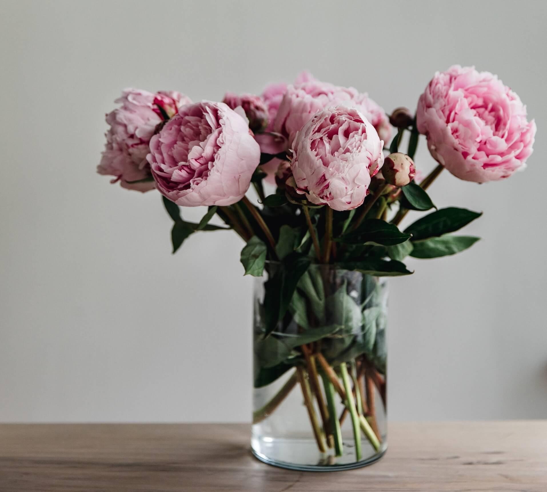 Por qué decorar con plantas y flores de colores: peonías