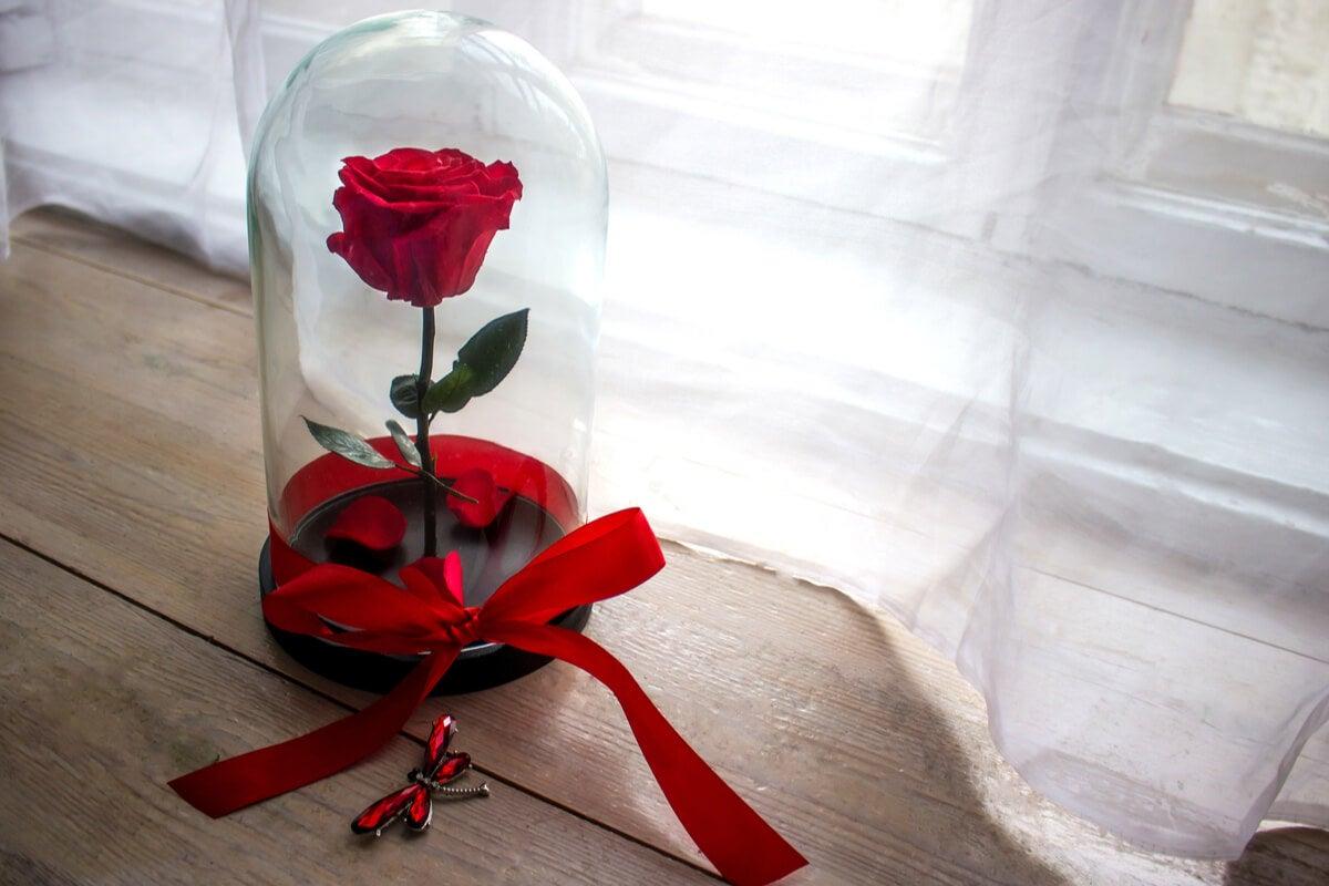 Te contamos cómo decorar con flores preservadas