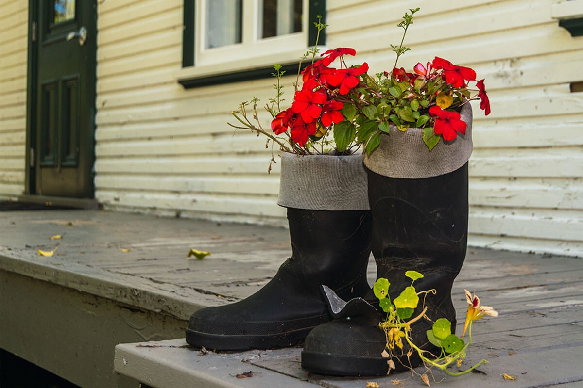 Boots and shoes can be very original pots.