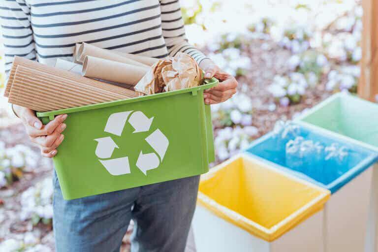 Reciclar en casa, aprende cómo hacerlo