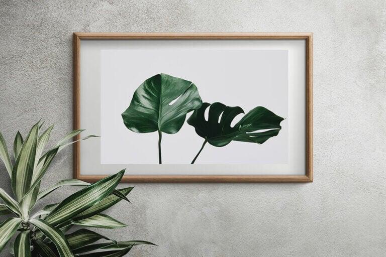 Cuadros con hojas, ¡hazlos tú misma!