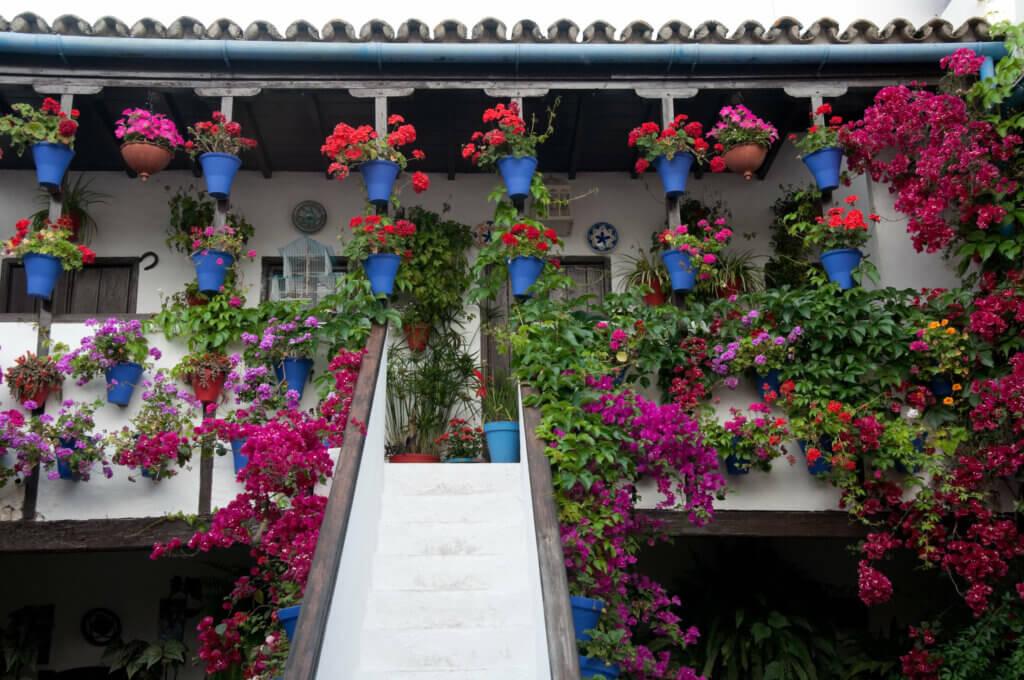 Atrapa las miradas de tus visitantes con un patio andaluz