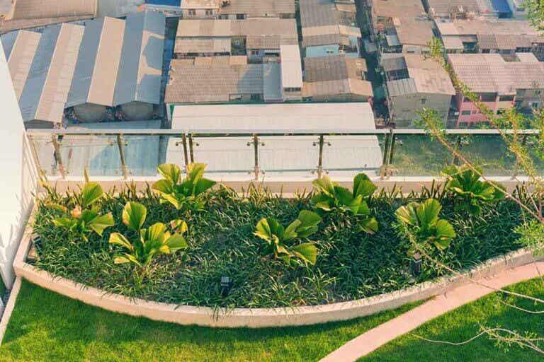 Ten tu propio huerto urbano en la terraza