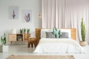 Cuscini e quadri con cactus