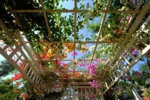 pergolato per la decorazione del giardino