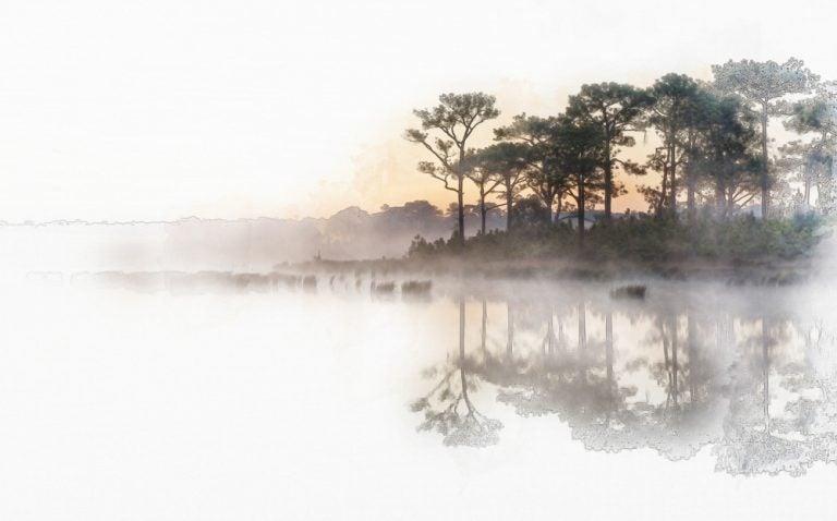 paesaggio con alberi e lago in acquerelli