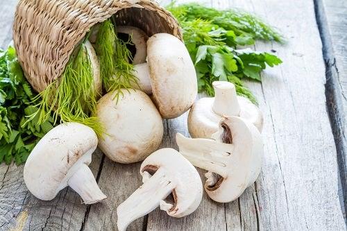 Scoprite come coltivare funghi nel giardino
