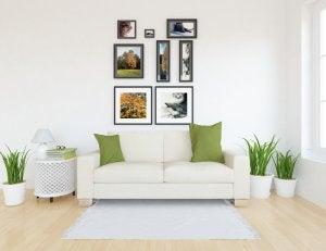 Casa con quadri di ambienti verdi