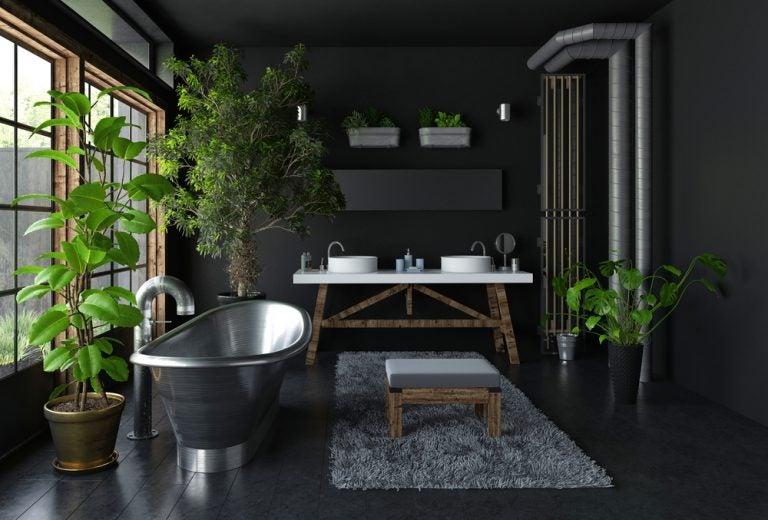 bagno con pareti nere, piante e vasca in acciaio