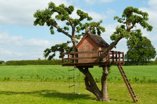 Costruire una casa sull'albero per i bambini, ecco 5 modi per farlo