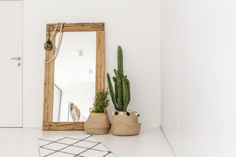 specchio con cornice in legno e piante cactus