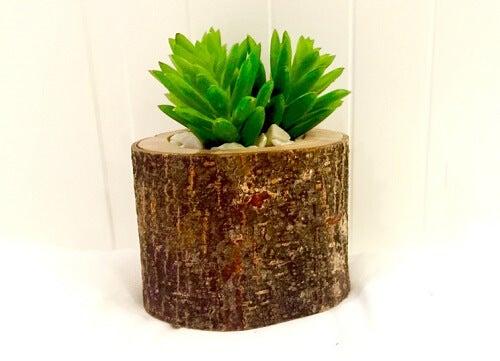 Un tronco verticale usato come vaso