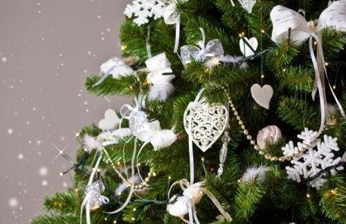 Come scegliere l'albero di Natale perfetto?