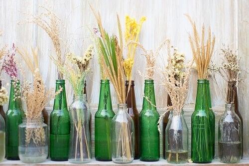 Bottiglie di vetro con spighe