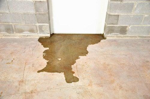 Acqua nel seminterrato
