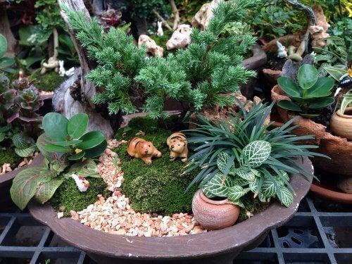 decorazioni fantasiose per il giardino