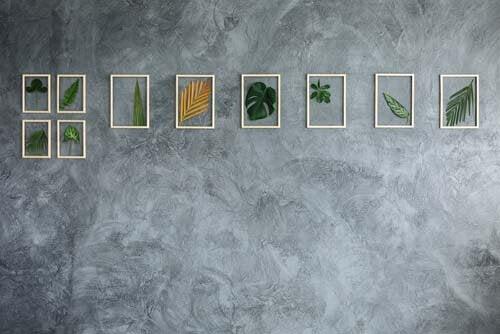 Foglie di piante tropicale dentro piccoli quadri