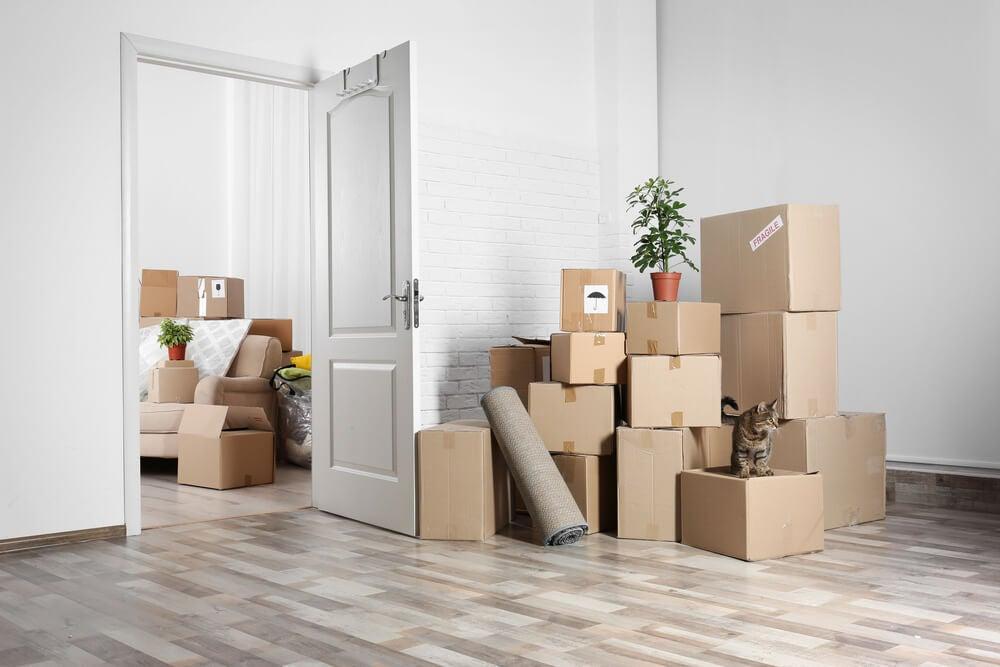 scatoloni-trasloco