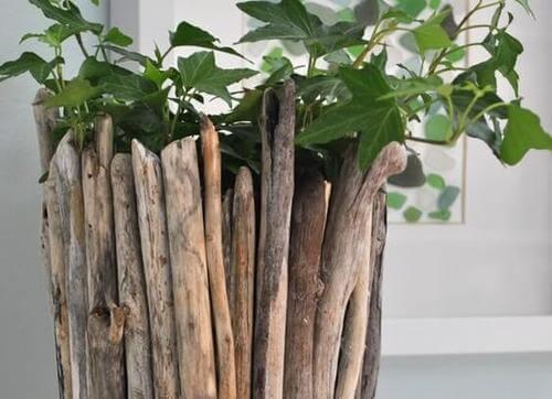 Vaso driftwood
