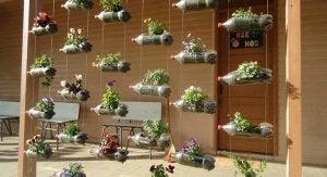un giardino verticale fatto con le bottiglie di plastica