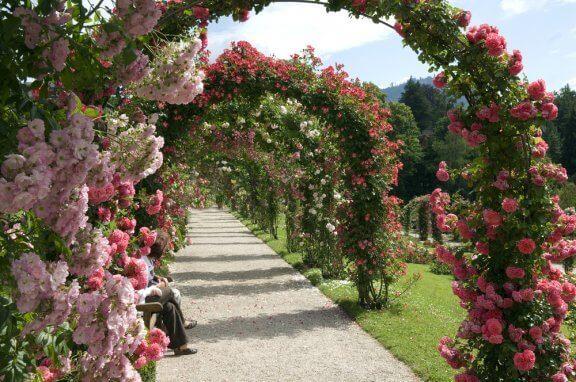 Ambientazioni paesaggistiche con archi floreali
