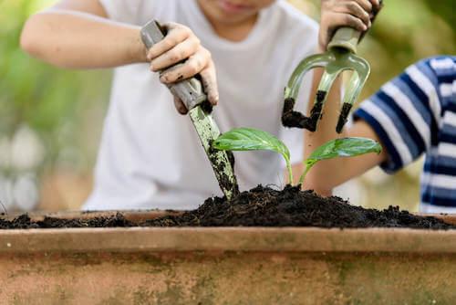 attrezzi per coltivare il proprio orto