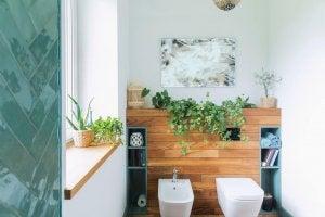 Bagno nuovo con piante e parete in legno.