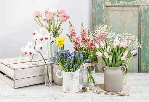 Elementi da decorare con fiori