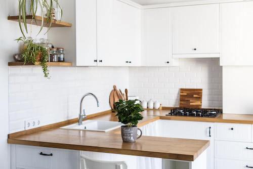 Sistemare la casa con piante decorative in cucina