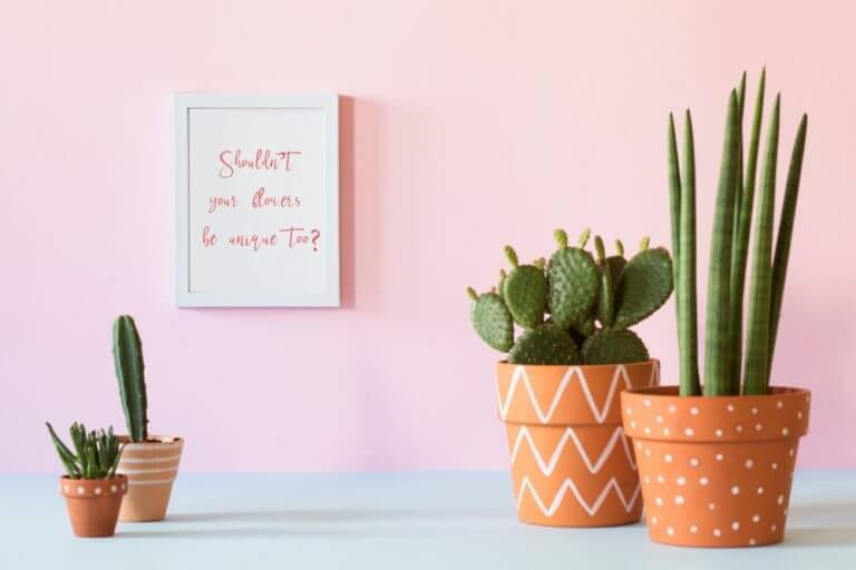 Vasi di argilla su sfondo rosa