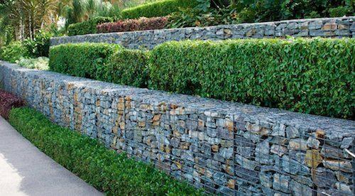muro con gabbioni e piante
