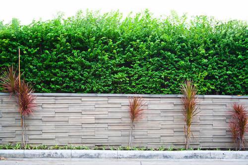 muro di recinzione giardino